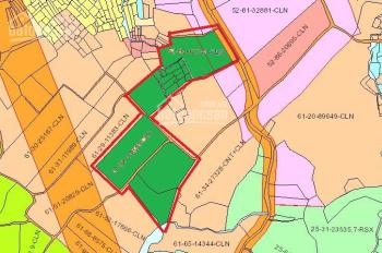 Bán nhanh 5,6ha vườn cao su 5 tuổi ở xã Phú An, Tân Phú, Đồng Nai, giá 850 triệu/ha, LH: 0988476868