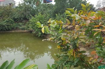 Cho thuê 1.000m2 đất tại thôn Lập Trí, xã Minh Trí, Sóc Sơn, Hà Nội