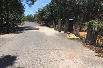 Bán đất thị trấn Phước Bửu đường nhựa 9m giá 60tr/m ngang có 50m thổ cư