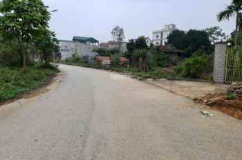 Bán đất gần khu chợ Cò xã Yên Bình diện tích 4680m2, giá 1 triệu/m2