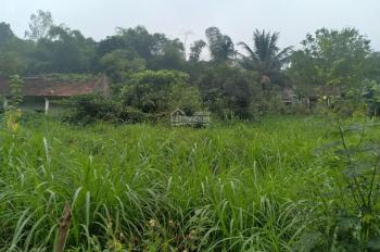 Cần bán 2100m2 thôn Quýt, xã Yên Bài, Ba Vì, HN view đẹp nhìn ra cánh đồng giá 2,5 tỷ, 0971274648