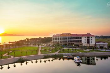 Đất khu Phước Trạch - Phước Hải, Cửa Đại, Hội An. Giá tốt đầu tư lâu dài - LH 0905 266 862
