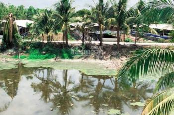 Gia đình cần bán gấp trang trại nuôi heo Trảng Bom, Cây Gáo