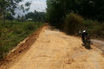Đất Trang Trại - Ấp Tân Hòa - Xã Tân Bình-Tp. Tây Ninh