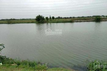 Nhận kí gửi mua bán nhà và đất khu vực Nhơn Trạch, Đồng Nai, đặc biệt gần phà Cát Lái