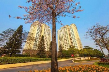 Chính chủ cần cho thuê nhà mặt phố Đội Cấn, Ba Đình, Hà Nội (mặt tiền rộng). LH: 0972 362 948