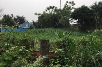 Do nhu cầu không sử dụng gia đình tôi cần chuyển nhượng mảnh đất 1030m2 ở Yên Bài, Ba Vì, Hà Nội