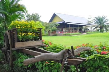 Mở bán đất nền ngay QL1A, khu du lịch Xuân Lộc Đồng nai sân bay Long Thành 500m2, sổ đỏ trao tay