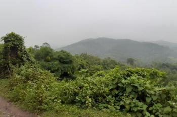 Bán khu đất 10ha rừng tại thị trấn Lương Sơn, Hòa Bình
