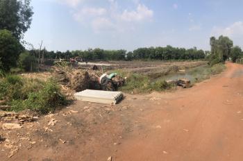 Bán 1 hecta đất giáp rạch sông Thị Tính, đã móc ao sẵn để nuôi cá và trồng cây, gần cầu Thới An