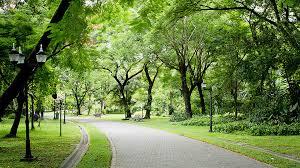 Dự án Vườn Cam Vinapol, phân phối trực tiếp Mr Thơ 090.6699.986