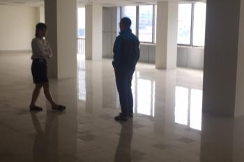 Cho thuê văn phòng quận Hai Bà Trưng, phố Trần Khát Chân, 160m2, 330m2 - 900m2, giá 130 nghìn/m2/th