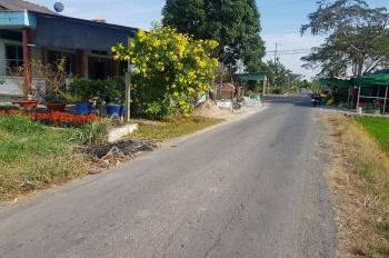 Cần bán 1.500m2 đất trồng 260 gốc Thanh Long đang thu hoạch, cách đường nhựa 30m. LH: 0939035551
