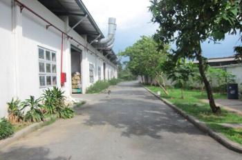 Cần sang lại nhà xưởng 2300m2 giá 65tr/th đang sản xuất may mặc tại Vĩnh Phú, Bình Dương