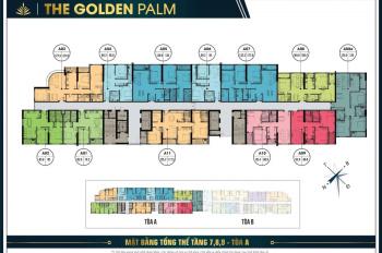 Chính chủ bán căn hộ 2PN dự án Golden Palm, giá 2.75 tỷ