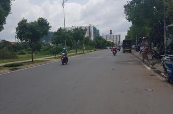 Cần bán đất KDC Bình Điền, mặt tiền Nguyễn Văn Linh, Q.8, giá 25tr/m2, DT 100m2, SHR. LH 0799812952