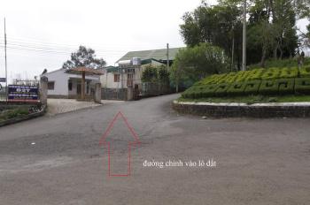 Đất diện tích lớn Bảo Lộc cho thuê