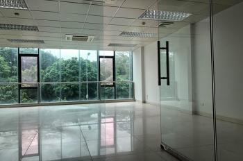 Cần cho thuê gấp tòa nhà 8 tầng phố Tôn Đức Thắng, DT 90m2, 8T, giá 170 triệu/tháng. 0949170979