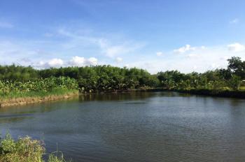 Chính chủ bán đất vườn tại xã Sông Ray, Cẩm Mỹ, Đồng Nai