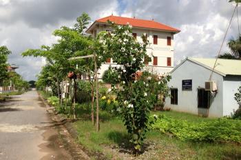 CC cần bán gấp lô biệt thự BT4 Hoa Phượng 245.5m2, giá 8.1 tỷ cả nhà và đất, LH 0978478468