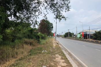 Chính chủ cần bán 5.030m2, đất mặt tiền Nguyễn Hữu Trí, Tân Túc, Bình Chánh