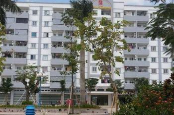 Bán chung cư Petro Thăng Long, Thái Bình