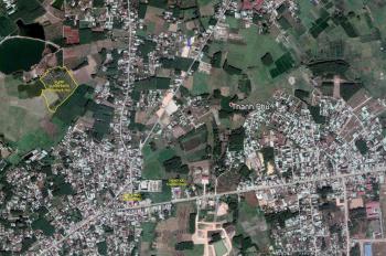 Bán vườn bưởi 4ha đã 7 năm tuổi tại xã Thạnh Phú, huyện Vĩnh Cửu, Đồng Nai, LH: 0909 161 222 Luân