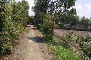 Bán đất huyện Đức Hòa, 6100m2 xã Tân Phú, cách Tỉnh lộ 830 300m, giá 2 tỷ 100 triệu