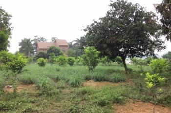 Cần cho thuê 1500m2 đất trang trại mặt hồ Đồng Chanh, Lương Sơn, Hòa Bình (chính chủ)