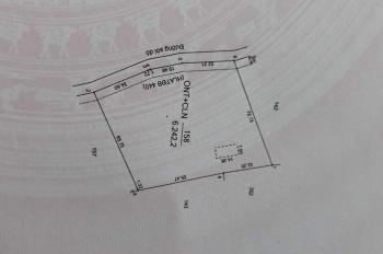 Cần bán 3.2 mẫu cao su tại xã Minh Hòa, Dầu Tiếng, Bình Dương, 1tỷ550tr 1 mẫu