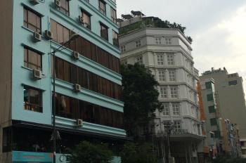 Bán nhà MT số 33 Trần Nhật Duật DT 8m x 20m và 5 căn MT đường Phạm Ngũ Lão, Bùi Viện, Trần Đình Xu