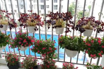 Cần bán gấp căn hộ Prosper Plaza, 65 m2, 2PN, tầng thấp, view hồ bơi - nhận nhà ngay. LH 0906539693