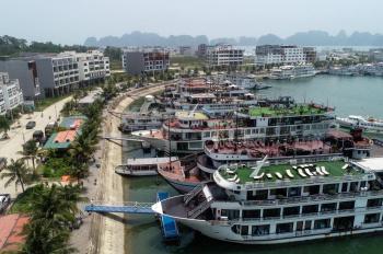 Bán lô shophouse góc Tuần Châu Marina, vị trí trung tâm âu tầu quốc tế, view trực diện vịnh Hạ Long