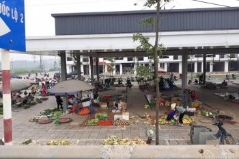 Mở bán dự án khu đô thị và thương mại Việt Trì