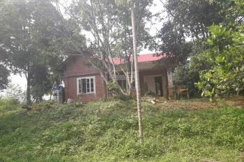 Cần bán 3600m2 đất hợp làm trang trại nhà vườn tại Cư Yên, Lương Sơn, Hòa Bình