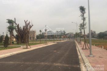 Chính chủ bán lô LK3-16 view công viên đường trục chính dự án Happy Land Đông Anh