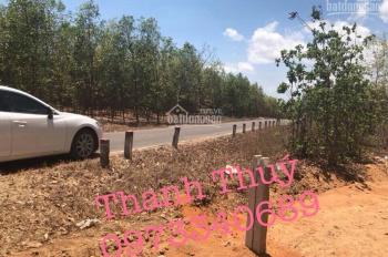 Đất biệt thự liền kề sân bay Phan Thiết xã Thiện Nghiệp chỉ 990tr sở hữu ngay 1000m2 đất lý tưởng