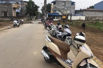 Bán đất Đống Hương, Quán Toan, Hồng Bàng, Hải Phòng
