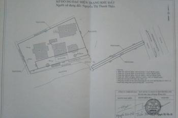 Chính chủ bán biệt thự Thủ Dầu Một, Bình Dương, giá 30 tỷ