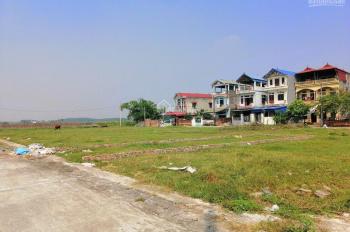Chính chủ cần bán 66.8m2 đất đấu giá Nguyên Khê, Đông Anh, quy hoạch mặt đường 40m, LH 0971987789