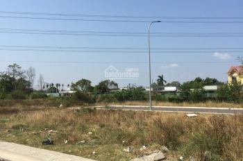 Tôi cần bán nền đất Hoàng Phan Thái, Bình Chánh 81m2, giá 19.5 tr/m2