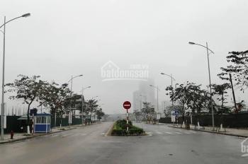 Tại sao nên đầu tư vào An Vượng Villas, Dương Nội, Hà Đông