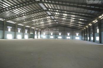 Cho thuê kho xưởng Nguyễn Văn Linh, Bình Chánh, 1000m2, 1500m2, 4500m2, 8000m2. LH: 0938568199