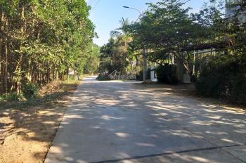 Cho thuê 4000m2 đất rừng có 58m MT đường QL 14B, Hoà Phong làm trang trại, kho xưởng 15tr/tháng