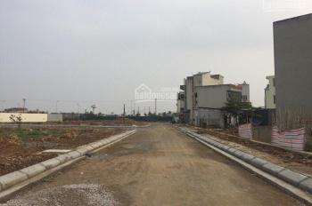 Chính chủ cần bán đất dịch vụ Nam An Khánh, xã An Thượng, Hoài Đức, Hà Nội, DT 50m2, giá 16tr/ m2