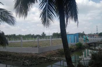 Bán 3551m2 đất chính chủ tại huyện Châu Thành, tỉnh Tiền Giang