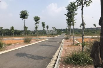 Chính chủ bán mảnh 300m2 tái định cư đại học Quốc gia Hòa Lạc, Thạch Thất, Hà Nội