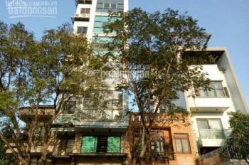 Chính chủ bán nhà MT Bình Quới, P. 27, Bình Thạnh dt 8x23m, 7 lầu, TN: 200tr, giá: 36tỷ. 0938527368