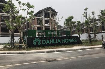 Top 3 dự án nhà liền kề đáng sống nhất Hà Nội dành cho khách hàng yêu thiên nhiên, yêu sức khoẻ