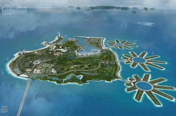 Hot tập đoàn Tuần Châu bắt tay Coteccons phát triển hàng loạt dự án đảo Tuần Châu